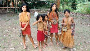 Jungle natives